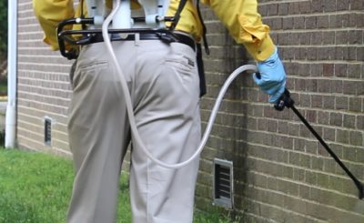Be Familiar With The Newest Techniques of Pest Control Sydney