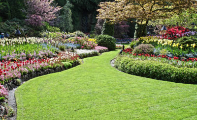 How to Locate Competent Landscapers Syracuse
