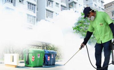 Minimize Health Hazards with Pest Control Sydney
