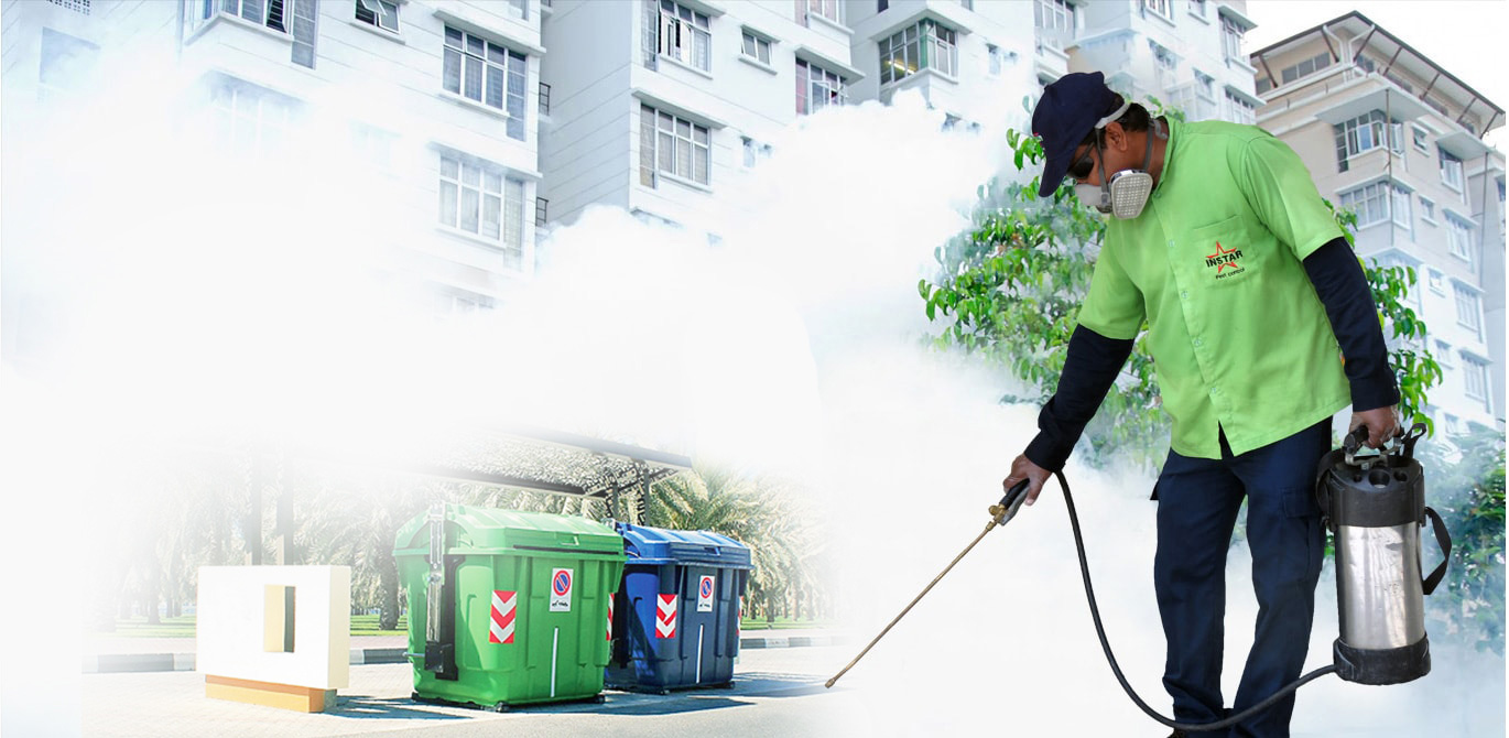 Minimize Health Hazards with Pest Control Sydney