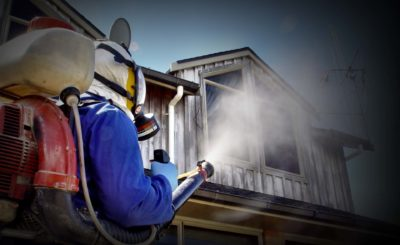 Some Significant Facts on The Pest Inspection Sydney
